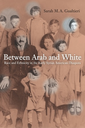 Between Arab and White by Sarah Gualtieri