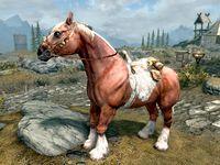 realistic horse mod skyrim se # 16
