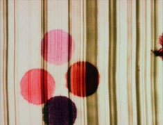 Film still from Swinging the Lambeth Walk featuring abstract dots against striped background
