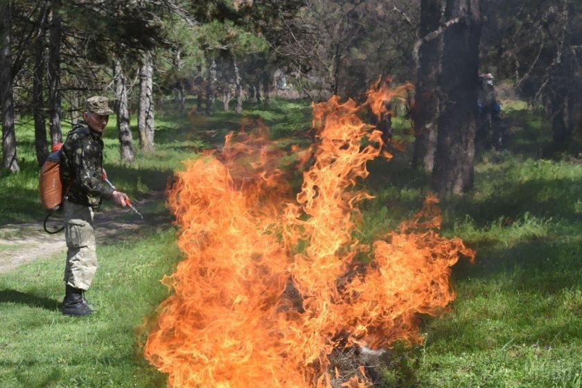 Тільки з початку року таких загорянь виникло вже понад 16 тисяч / УНІАН