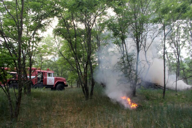 Пожежники нарешті впорались з пожежею у Чорнобильській зоні / ДСНС України