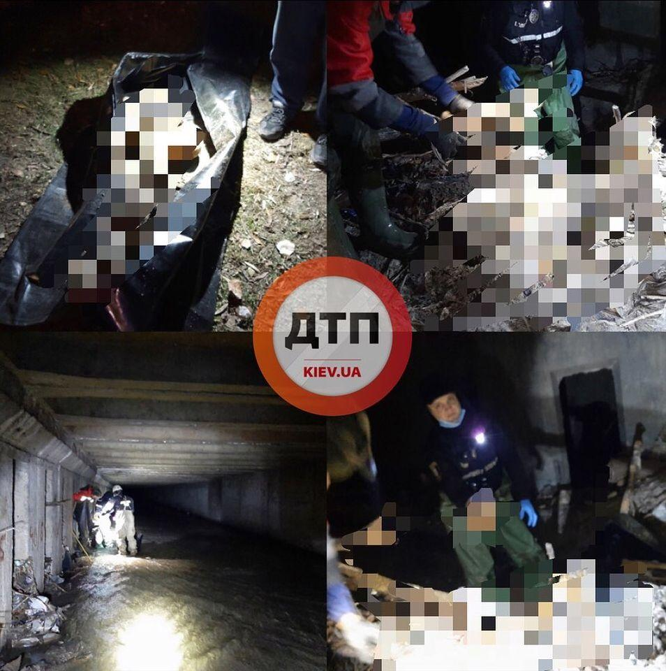 Останки передали полиции / фото dtp.kiev.ua