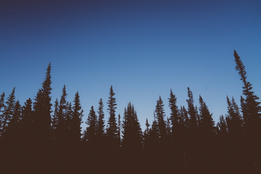 Finding Parallels Between Clearing and Life