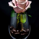 Pink Rose Flower Inside Wine Glass Photo Free Plant Image On Unsplash