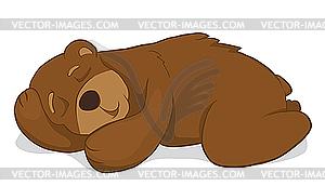 Schlafender Bär - Vector-Abbildung