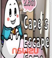 Cape's Escape Game 2.5th Room Switch NSP XCI