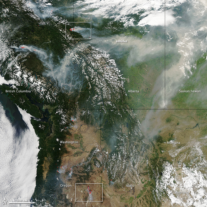 Forest Fires British Columbia Burn Size
