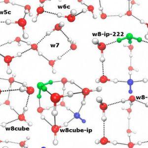 Die Wissenschaftler berechneten die Häufigkeit verschiedener Cluster von Wassermolekülen bei unterschiedlichen Temperaturen. Manche dieser Cluster sind dazu in der Lage, negativ geladene Hydroxid-Ionen (blau) und positiv geladene Hydronium-Ionen (grün) zu stabilisieren. (Ausschnitt)