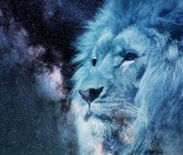 Preview Wallpaper Lion Muzzle Starry Sky Stars Photoshop King Of Beasts