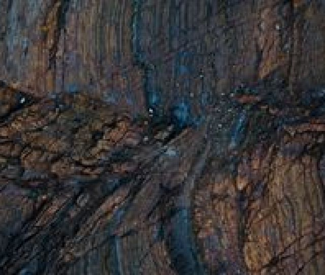 Preview Wallpaper Wood Surface Texture Wet