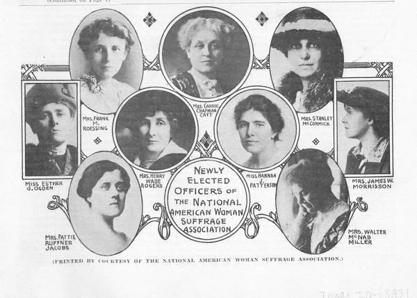 Image result for national american woman suffrage association