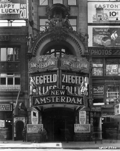Image result for new amsterdam theatre