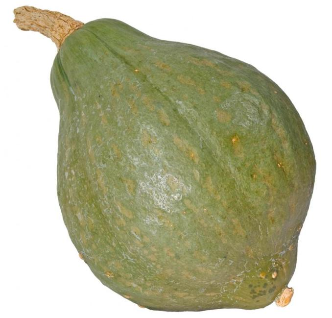 What Is Winter Squash? (with pictures)