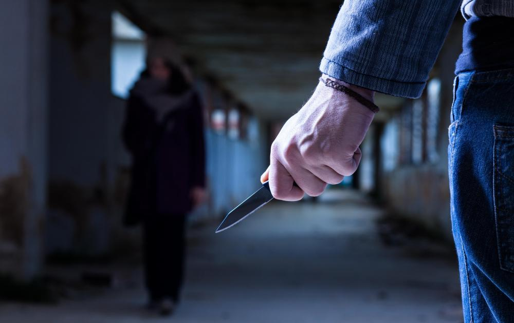 Image result for Crimes of Passion in domestic violence