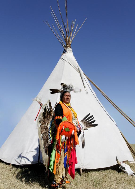 Native Borders American Print