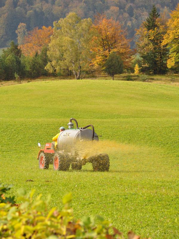 What Is Inorganic Fertilizer With Pictures