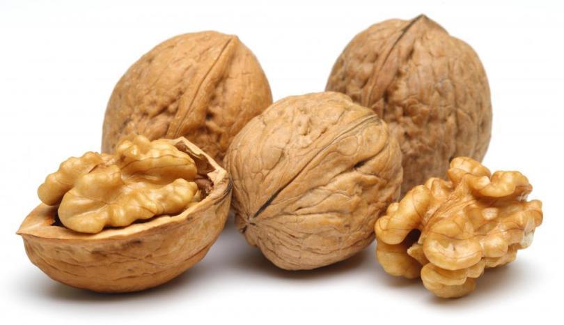 Image result for walnut