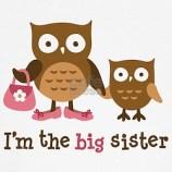 I'm the big sister cute owls Kid's T-shirt Design