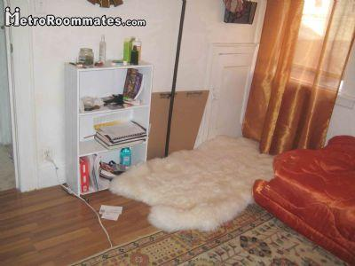 Rooms For Rent In Brooklyn New York New York 2 Bedroom roommate