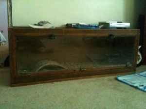Beautiful Reptile Cage 47425 For Sale In Bloomington Indiana Classified