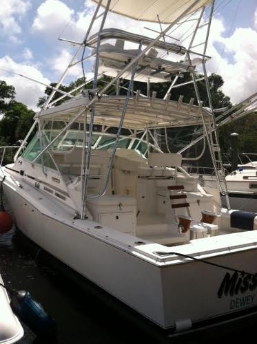 CABO 31 Express For Sale In Dania Florida Classified