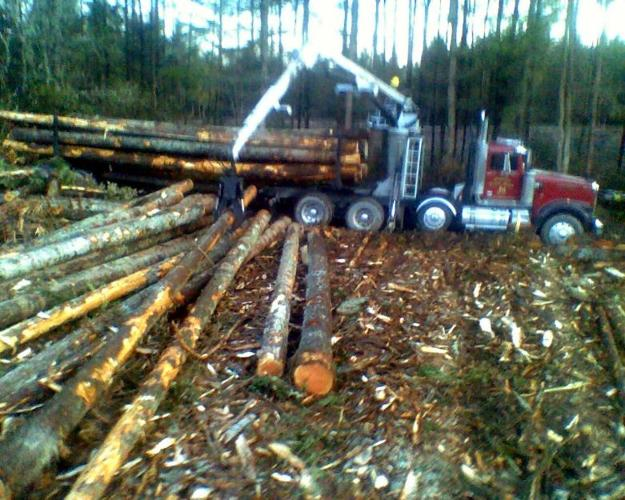 Firewood For Sale Selling Log Truck Load To Homeowner
