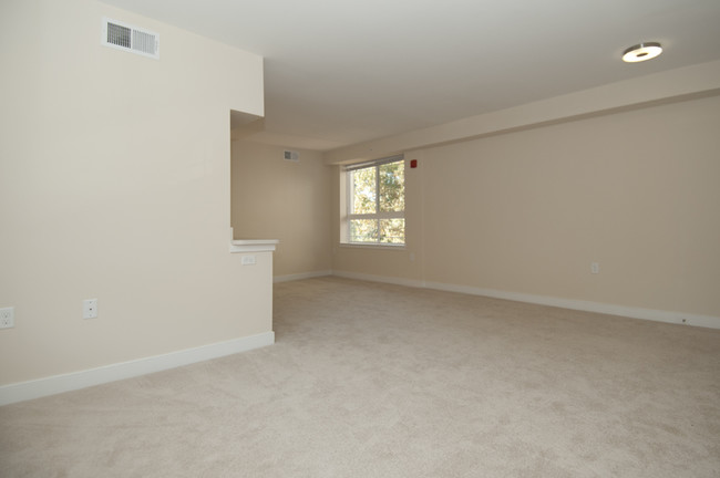Tanglewood Apartments Apartments Silver Spring MD