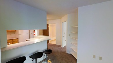 3 Br 2 Ba 800 Sf Treehouse South Apartments