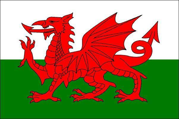 https://i2.wp.com/images1.fanpop.com/images/photos/1900000/Welsh-Flag-wales-1974164-602-402.jpg