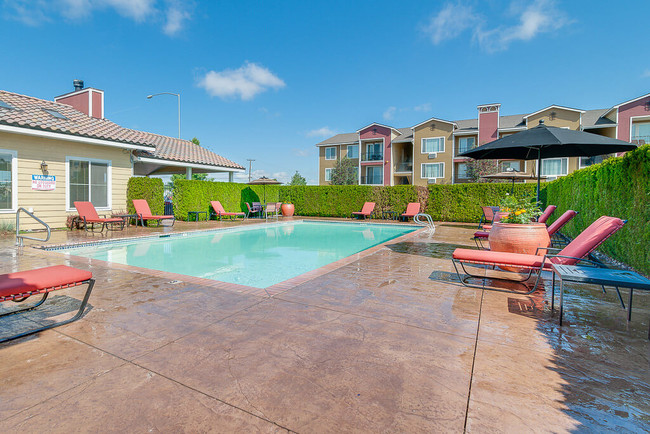 A Large Pool Surrounded By Lounge Chairs And Tall Hedges For Privacy The Vintage Apartments