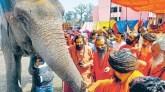 हरिद्वार कुंभ : आज निकलेगी निरंजनी अखाड़े की शाही पेशवाई, सीएम त्रिवेंद्र रावत करेंगे रवाना