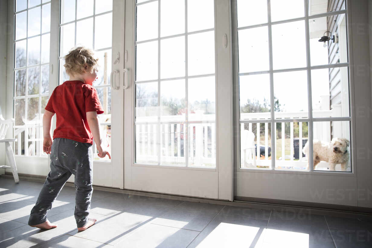 https www westend61 de en imageview cavf82887 toddler boy looks out large sliding glass door at dog on deck