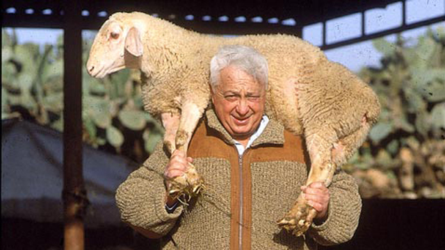 Ariel Sharon at his beloved Sycamore Ranch in the Negev (Photo: Yossi Rot)