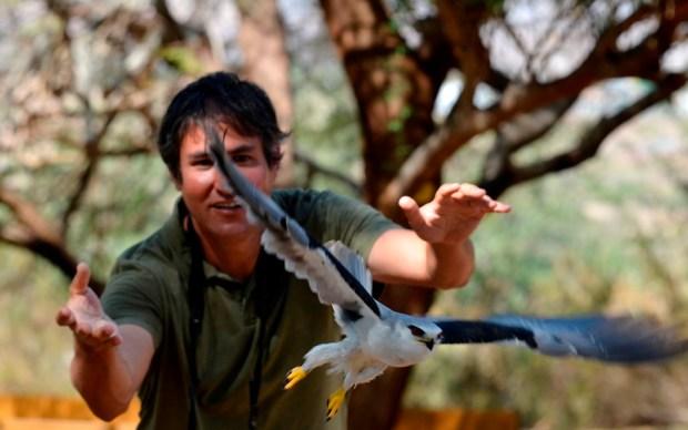 В орнитологическом парке Эйлата. Фото: Каролин Пуатевен