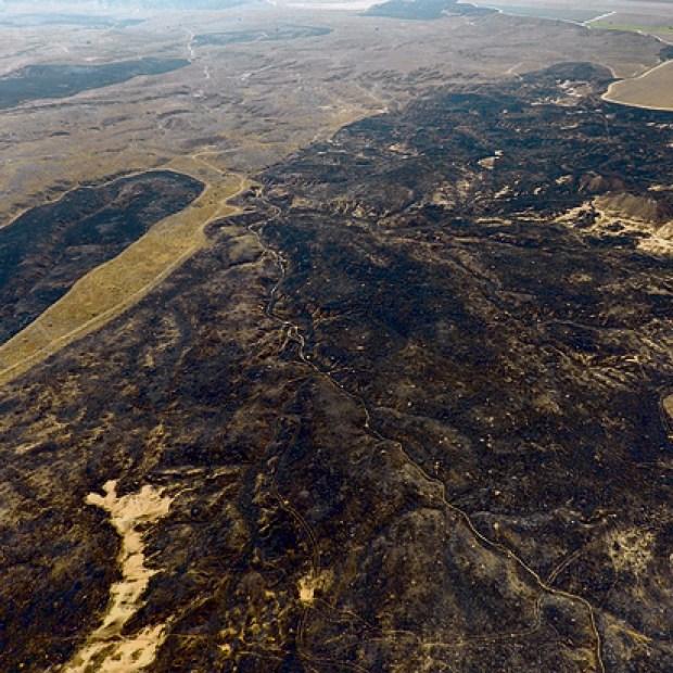 Выжженная долина Беэри
