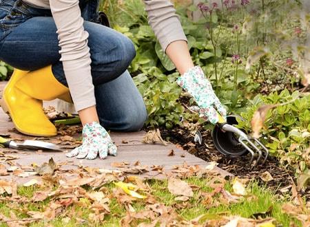d329cb6ecfd3d0895172ecdda595df98 - Зима близко: 10 вещей, которые вам необходимо сделать на даче этой осенью