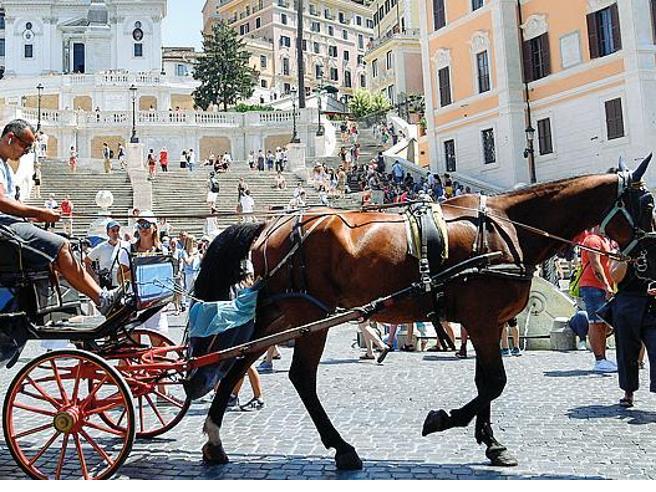 Botticelle, sì del Consiglio di Stato: Comune bocciato, adesso possono tornare in strada