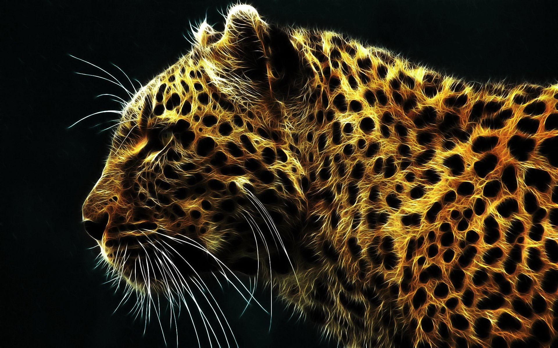 56944 Animal Hd Wallpapers Background Images Wallpaper Abyss