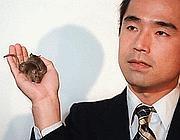 Wakayama e uno dei topi clonati nel 1998 (Ap)