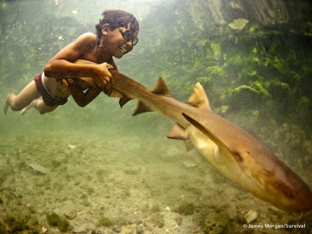 I Moken delle Andamane hanno sviluppato la capacità di mettere a fuoco sott?acqua. La loro vista è il 50% più potente della nostra (a cura di Joanna Eede ? www.survival.it)