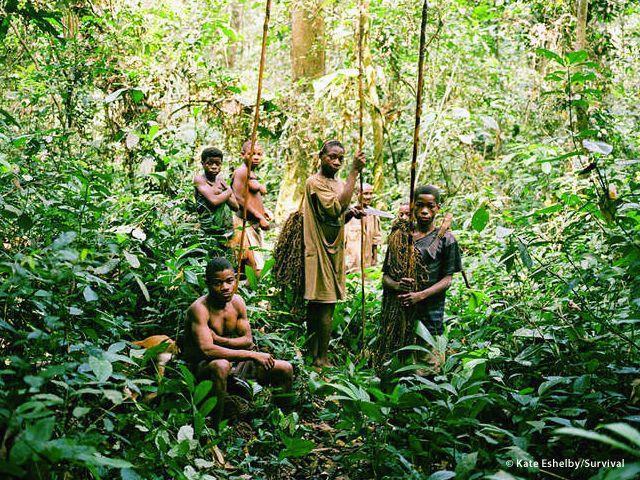 La maggior parte dei popoli tribali ha un?acuta sensibilità per il comportamento degli animali. I pigmei sanno imitare perfettamente molti dei loro versi (a cura di Joanna Eede?www.survival.it)