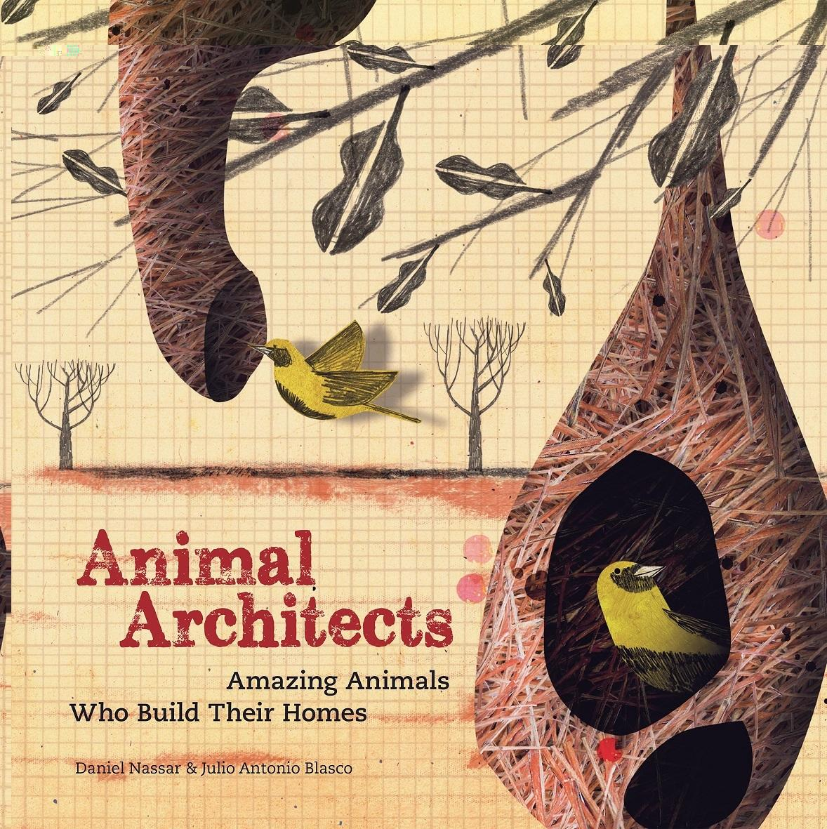 Animal Architects The Brilliant Builders Of The Animal