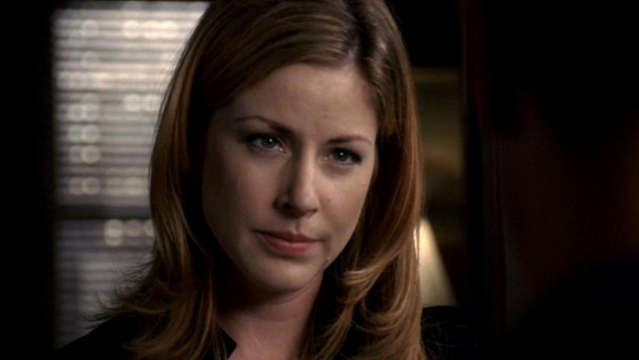 Image result for diane neal svu