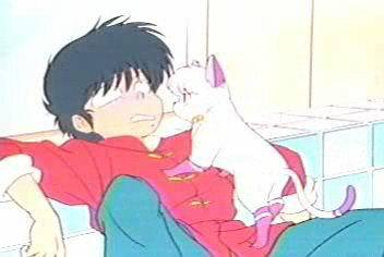 Ranma Is Scared Of Cats Because His Cat Fu Training Tatewaki Finds Out Ranmas Only Weakness And Sets A Trap Full