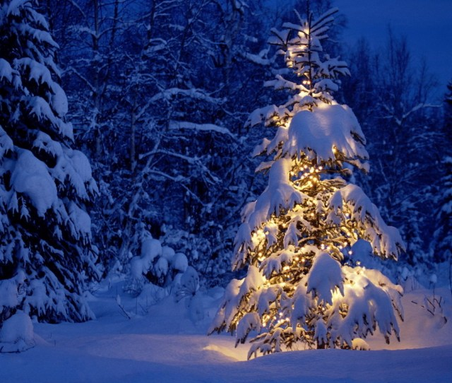 Winter Images Winter Wallpapers Hd Wallpaper And Background Photos