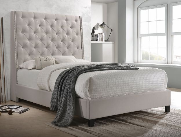 Crown Mark Bedroom Chantilly Queen Headboard Khaki 5265kh Q Hb