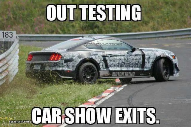 Why Are There So Many Mustang Memes Going Around