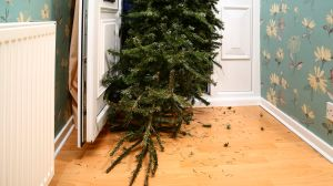 Ecological Ways to Get Rid of Your Christmas Tree