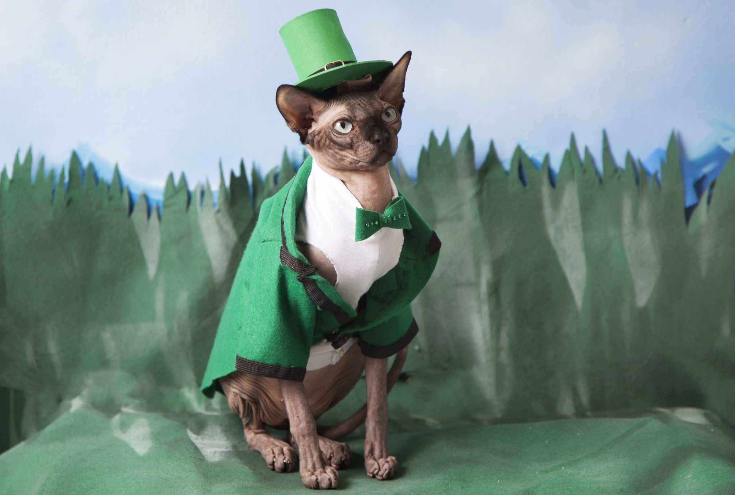 Things You Probably Didn T Know About Leprechauns Mental Floss