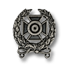 Expert Shooter Badge (optional).png